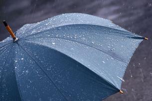 Прогноз погоды: в Бишкеке дождь
