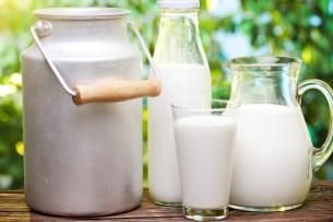 Молоко в Кыргызстане подорожало на 10,1%