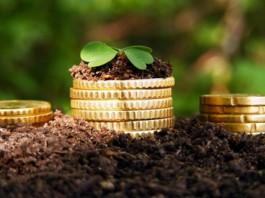Объем сельхоз кредитов увеличат до 7 млрд сомов