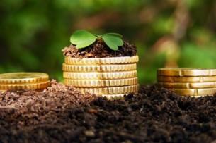 Фермерам Кыргызстана выдадут льготные кредиты на 1 млрд сомов