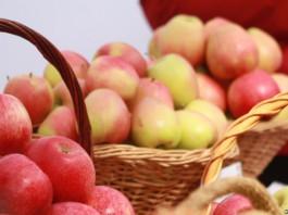Кыргызстан осенью может поставить на Алтай до 2 тыс. тонн дешевых яблок и груш