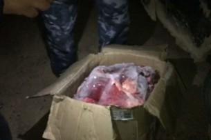 Задержаны браконьеры, перевозившие мясо горного архара
