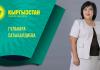Партия «Кыргызстан» №10: в столице внедрят «Нравственный кодекс бишкекчанина»