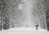 Декабрь в Кыргызстане начнется теплой погодой
