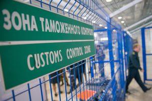 Таможня аэропорта Домодедово задержала экзотических птиц из Кыргызстана