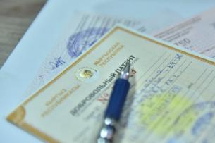 В Кыргызстане предлагают запретить проводить экспортные операции работающим по патентам лицам