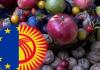 В Бишкеке обсудят возможности предоставленного Кыргызстану статуса ВСП+