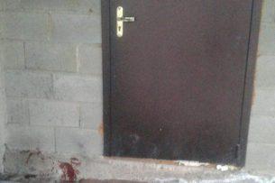 Очевидец об отстреле уличных собак: Пуля могла отскочить от бетона и попасть в человека