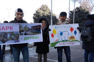 Возле мэрии проходит митинг в поддержку парка «Слоники» (видео)