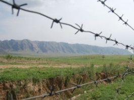 Гражданка Узбекистана пыталась перейти границу с чужим паспортом