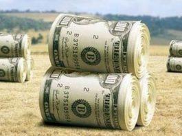 Иностранные кредиты: вернуть нельзя отказать