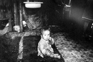 Минсоцразвития: дети в Сокулуке не питались внутренностями собаки