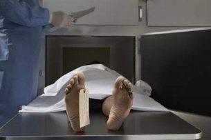 Все тела погибших при авиакатастрофе удалось опознать без генетической экспертизы