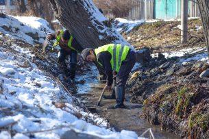 В Бишкеке началась чистка арыков и обрезка деревьев