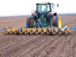 Саудовский фонд развития выделяет $59,5 млн на развитие орошаемого земледелия в Иссык-Кульской и Нарынской областях