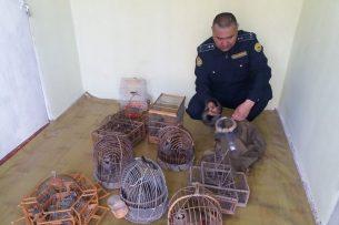Граждане Таджикистана оштрафованы на 58 тыс. сомов за незаконную ловлю куропаток в Кыргызстане