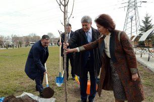 Атамбаев посадил дерево в сквере памяти Народной революции 24 марта 2005 года
