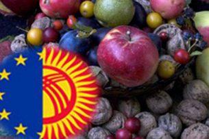 Кыргызстан может экспортировать в Европу только мед
