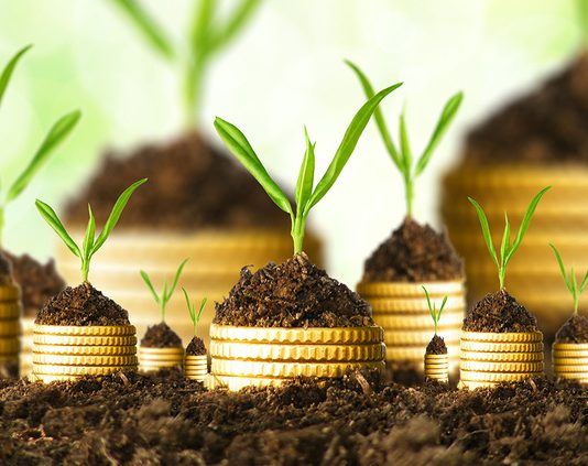 Фермерам Кыргызстана выдали льготных кредитов почти на 5 млрд сомов