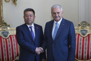 Чыныбай Турсунбеков провел встречу с премьер-министром Турции Биналы Йылдырымом