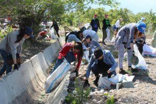 Активисты собрали 3,8 тыс. мешков мусора с берегов Иссык-Куля