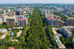 Эксперт: Мы потеряли прежний зеленый Бишкек