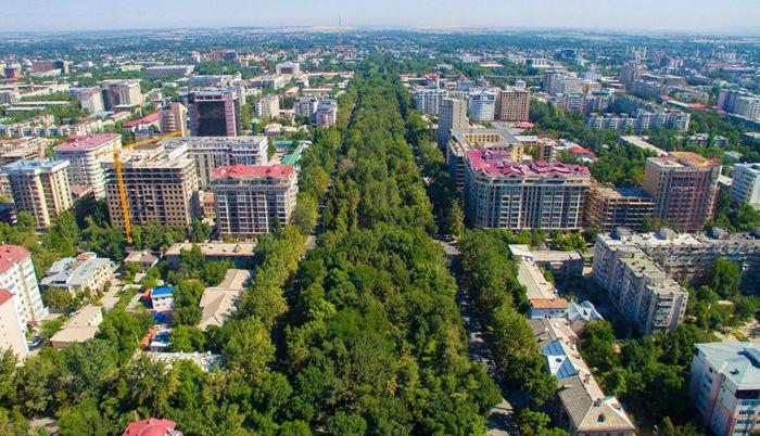 Эксперт: Мы потеряли прежний зеленый Бишкек — K-News