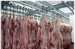 В Нарынской области строят убойных цех на 22 млн сомов