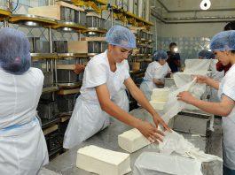 В Оше открылся молокоперерабатывающий завод, отвечающий требованиям ЕАЭС