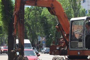 «Зеленстрой» приступил к вырубке деревьев по ул. Токтоналиева (видео)