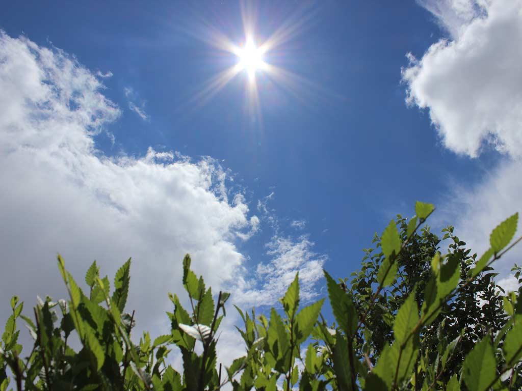 Погода в мире гродненская обл на 10 дней