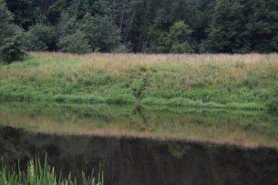 Кыргызстанец пытался пробраться в Литву, переплыв реку
