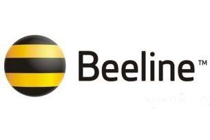 Праздник продолжается. Beeline передал ветеранам ВОВ почти 500 тыс. сомов