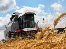 Десятки мукомольных предприятий в Казахстане могут закрыться