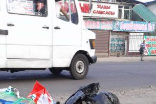 Мусор выбрасывают на газоны и проезжую часть: результаты инспекции мэрии Бишкека