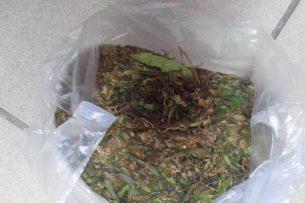 В Бишкеке с 2 кг марихуаны задержан мужчина