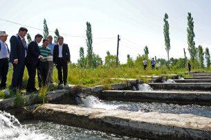 В зоне особого внимания: Премьер-министр мониторит реализацию госпрограммы по ирригации