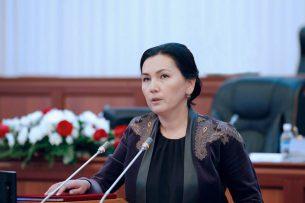 Салянова: Проект новой Конституции ведет к абсолютной диктатуре