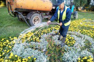 Каждую секунду на полив зеленых насаждений Бишкека тратится 4,5 тыс. литров воды
