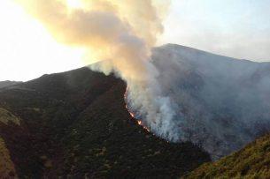 На Иссык-Куле пожар: второй день горит сухотравие