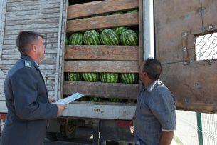 С начала лета Россельхознадзор не пустил в Новосибирскую область более 5 тыс. тонн продукции из стран Центральной Азии