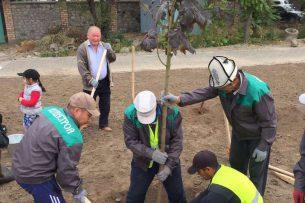 В Бишкеке продолжают высаживать деревья