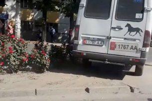 Очевидец: Водители маршруток, избегая пробок, выезжают на «зебры» и уничтожают цветы на газонах