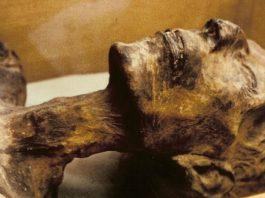 Мумию поместили в землю «умирать» — археолог Валерий Кольченко