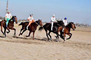 В Кыргызстане выбрали лучших скакунов страны