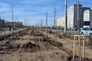 На Южной магистрали Бишкека появилась Аллея энергетиков