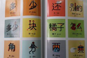 В Кыргызстане запатентована новая методика изучения иероглифов