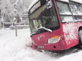 В центре Бишкека автобус съехал в арык (фото)