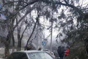 ДТП в центре Бишкека: машина оказалась зажатой между бетонной плитой и деревом