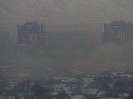 Учёные: Загрязнённый воздух грозит эпидемией гриппа и пневмонии среди детей